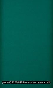 grupa C 2228-819,blackout,verde,verso alb