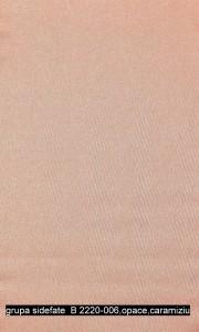 grupa sidefate  B 2220-006,opace,caramiziu