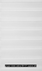 grupa rolete zebra BH 01,opace,alb