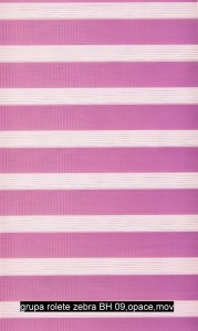 grupa rolete zebra BH 09,opace,mov