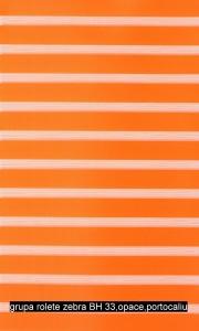 grupa rolete zebra BH 33,opace,portocaliu