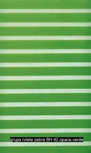 grupa rolete zebra BH 42,opace,verde